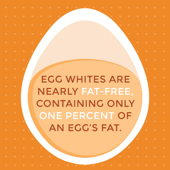 Egg Whites Contain Only 1% of Egg's Fat