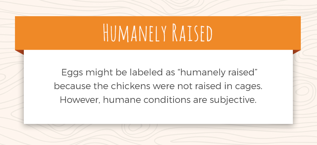 Description of Humanely Raised Chicken Eggs