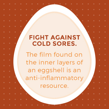 Eggshells Provide an Anti-Inflammatory Resource for Treating Cold Sores
