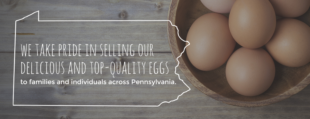 Selling Delicious and Top-Quality Eggs