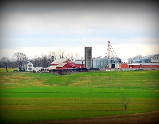 Meadowview Farm View from Far Away Field