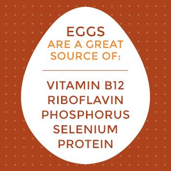 Egg Nutritional Sources