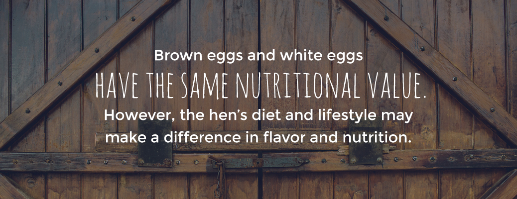 Brown and White Eggs Have the Same Nutritional Value