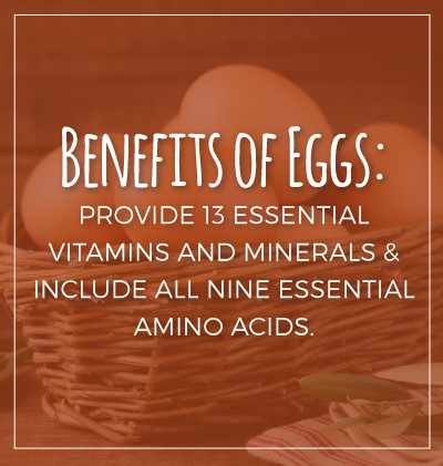Essential Benefits of Eggs