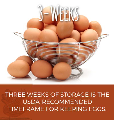 Egg Storage Timeframe of when to Keep Eggs
