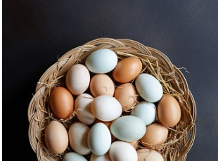 Duck and Hen Eggs