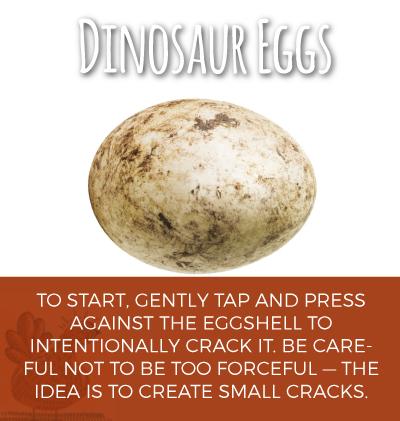 Dinosaur Eggs How To