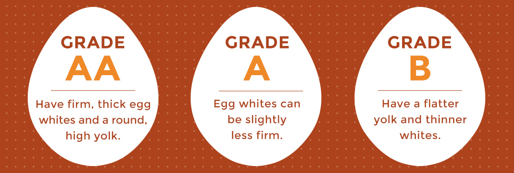 Description of USDA's Egg Grades