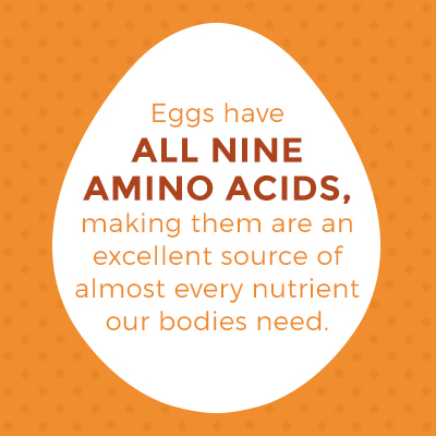 eggs have all nine amino acids, making them an excellent source of almost every nutrient our bodies need