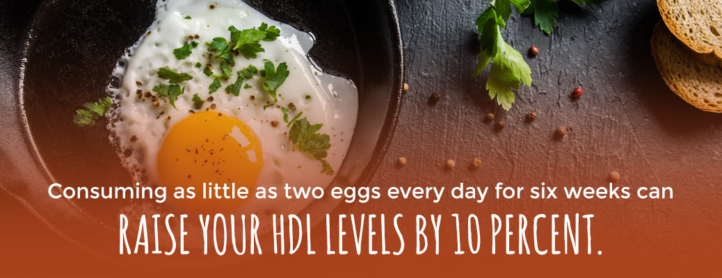 Consuming as little as two eggs every day for six weeks can raise your HDL levels by 10%