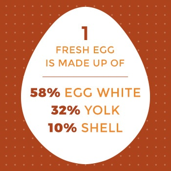 fresh eggs are 58 percent egg white