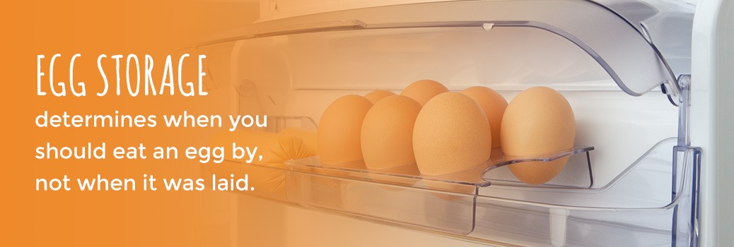 do not store your eggs in your refrigerator door