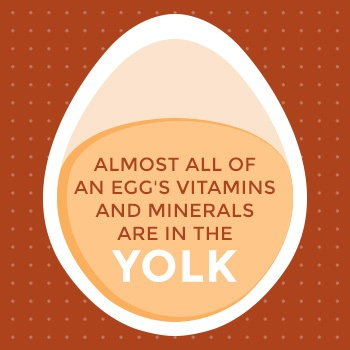 egg yolk vitamins and minerals