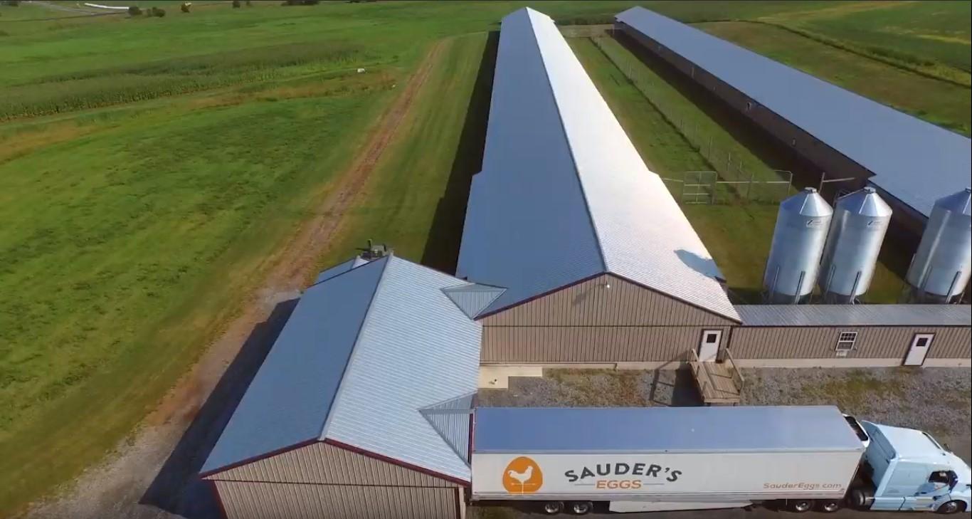 Sauder's Eggs | Family-Owned Egg Wholesaling Business